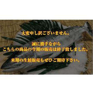 ある程度の着日指定も可能ですが不漁で、また生鮮品に付き悪天候で漁が出来ない場合が有り希望通りに発送出...