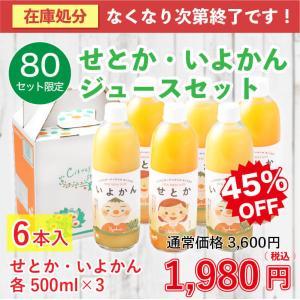 愛媛県産 みかんジュース 数量限定 せとか いよかん シトラスガーデン 500ml×6本セット