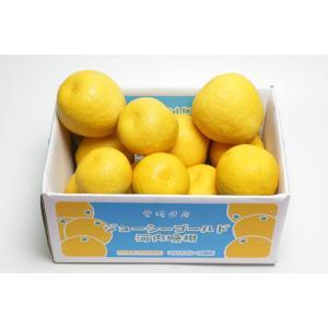 ジューシーゴールド(河内晩柑) お徳用5kg 約10〜18玉(大小含む)