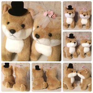 ウェディングドール 柴犬 NEW Wedding Doll 日本製 【ウェルカムドール/ぬいぐるみ/ウェルカムドッグ/ウェディングドッグ/ブライダル/結婚祝い】|maruwa1923