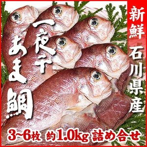 (石川県産)甘鯛一夜干し:3〜6枚(合計 約1.0kg)|maruya