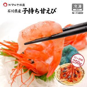 甘えび 子持ち ( 訳あり/石川県産/お刺身用 ) 250g 15〜20匹|maruya