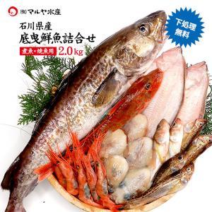四季の魚を直送!旬の獲れたて底曳鮮魚 2.0kg詰め合わせ (石川県産/主に焼魚&煮魚用・下処理済み) ※お届け日の指定不可 maruya