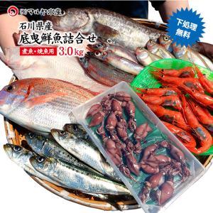 四季の魚を直送!旬の獲れたて底曳鮮魚 3.0kg詰め合わせ (石川県産/主に焼魚&煮魚用・下処理済み)  ※お届け日の指定不可 maruya
