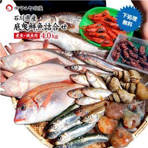 四季の魚を直送!旬の獲れたて底曳鮮魚 4.0kg詰め合わせ (石川県産/主に焼魚&煮魚用・下処理済み) ※お届け日の指定不可 maruya