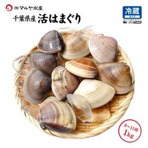 活はまぐり ( 地蛤 ) 千葉県産 天然 1.0kg 8〜11個|maruya