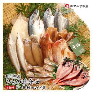 干物/一夜干し (石川県産) お任せ 7〜8種+のどぐろ2〜3枚 詰め合わせ|maruya