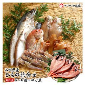(石川県産)一夜干し/ひもの 6種+のどぐろ 詰め合せ:松|maruya