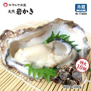 お中元 ギフト 岩牡蠣 (天然 殻付き 生食用) 石川県産 特大×10個|maruya