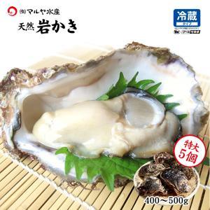 お中元 ギフト 岩牡蠣 (天然 殻付き 生食用) 石川県産 特大×5個|maruya
