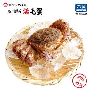 お中元 ギフト 数量限定入荷!活毛蟹 1匹 400g〜350g (石川県産) maruya