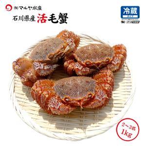 (石川県産)毛蟹:1.0kg詰め合わせ(雄雌混合2〜4匹)|maruya