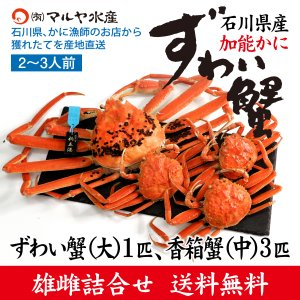 カニ漁解禁!(石川県産)ズワイガニ/加能かに:大サイズ1匹、香箱蟹3匹の詰め合せ(2〜3人前)|maruya