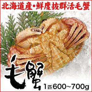 (北海道産)活毛蟹:特大:600〜700g×1匹|maruya