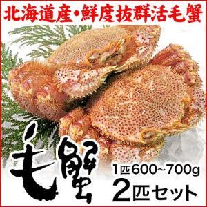 (北海道産)活毛蟹:特大:600〜700g×2匹|maruya