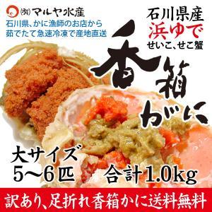 香箱蟹/せいこ (石川県産) 訳あり 大きめ 1kg詰め合わせ (5〜6匹)|maruya