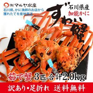 カニ漁解禁!(石川県産)訳あり足折れ ズワイガニ/加能かに:3匹 合計2.0kg以上|maruya