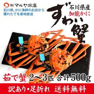 (石川県橋立産)訳あり足折れ ズワイガニ[加能かに]2匹:合計500g以上|maruya