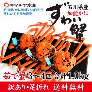 (石川県橋立産)訳あり足折れ ズワイガニ/加能かに:2匹 合計700g以上|maruya