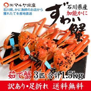 カニ漁解禁!(石川県産)訳あり足折れ ズワイガニ/加能かに:3匹 合計1.5kg以上|maruya