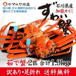 カニ漁解禁!(石川県産)訳あり足折れ ズワイガニ/加能かに:2匹 合計1.3kg以上|maruya