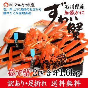カニ漁解禁!(石川県産)訳あり足折れ ズワイガニ/加能かに:2匹 合計1.6kg以上|maruya