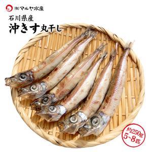 [石川県産]めぎす一夜干し (にぎす/沖きす) ×7匹|maruya