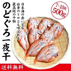 のどぐろ(のど黒) 一夜干し / 干物 7〜10枚 合計500g|maruya