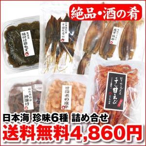 日本海からの酒の肴 (特選) 珍味6種 詰め合せ|maruya