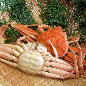 (石川県橋立産)茹で香箱蟹/せいこ:中サイズ×1匹|maruya