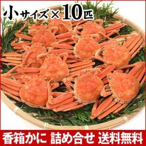 カニ漁解禁!(石川県産)茹で香箱蟹/せいこ:小サイズ×10匹|maruya