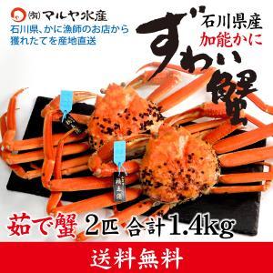 カニ漁解禁!(石川県産)ズワイガニ/加能かに:2匹 合計1.4kg|maruya