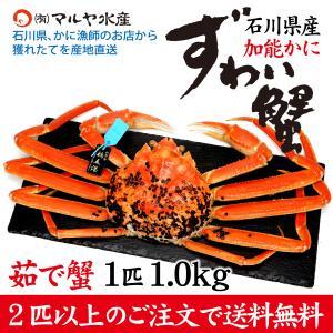 カニ漁解禁!(石川県産)ズワイガニ/加能かに:1匹 約1.0kg|maruya