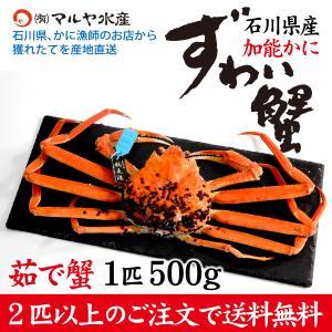 カニ漁解禁!(石川県産)ズワイガニ/加能かに:1匹 500g以上|maruya