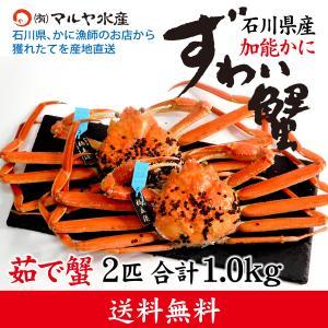 カニ漁解禁!(石川県産)ズワイガニ/加能かに:2匹 合計1.0kg以上|maruya