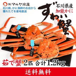 カニ漁解禁!(石川県産)ズワイガニ/加能かに:2匹 合計1.2kg以上|maruya