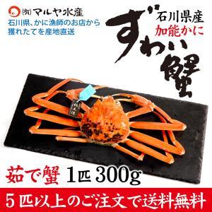 カニ漁解禁!(石川県産)ズワイガニ/加能かに:1匹 300g前後|maruya