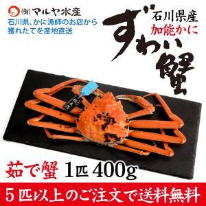 カニ漁解禁!(石川県産)ズワイガニ/加能かに:1匹 400g前後|maruya
