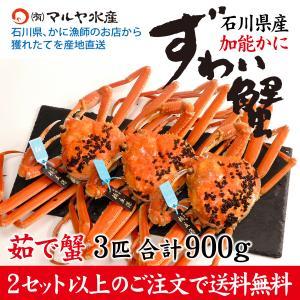 (石川県橋立産)ズワイガニ/加能かに:3匹 合計900g以上|maruya