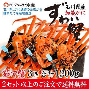 (石川県橋立産)ズワイガニ/加能かに:3匹 合計1.2kg以上|maruya