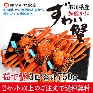 (石川県橋立産)ズワイガニ/加能かに:3匹 合計750g以上|maruya