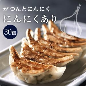 丸山餃子 にんにくあり【30個入り】|maruyamagyoza