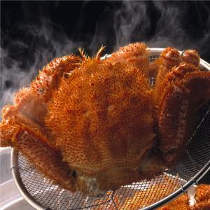 毛ガニ約500g前後 北海道産