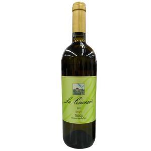 ロッカ ディ カスタニョーリ レ カチャイエ ビアンコ トスカーナ 辛口 白ワイン 750mlの商品画像|ナビ