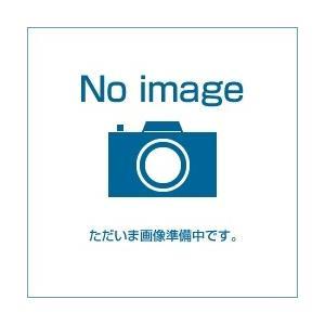 ジャニス[Janis] 化粧棚(化粧頭付木ねじ付) AYボルト 手洗器用 化粧頭付AYボルト NT1305[代引不可]|mary-b