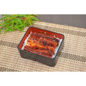 鹿児島県産鰻蒲焼有頭1尾 masarujo