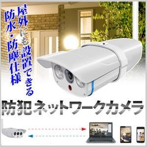 【着後レビューで送料無料】アールアイジャパン Ri-JAPAN 防水 防塵 赤外線暗視付き 防犯ネットワークカメラ RCC-7100WP|masuda-shop