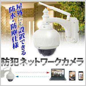 【着後レビューで送料無料】 アールアイジャパン Ri-JAPAN 防水 防塵 赤外線暗視付き 防犯ネットワークカメラ RCC-9805WP|masuda-shop