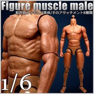 筋肉質 フィギュア 素体 フィギュア 男性素体 筋肉 男性ボディ 1/6スケール 1/6 ヘッドレス 可動 ポーズ ポージング|masuda-shop