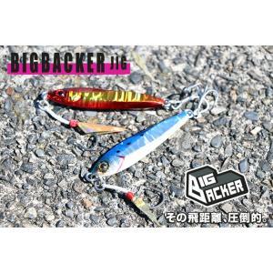 ジャッカル ビックバッカージグ30g ショアキャスティングメタルジグ ゆうパケットでも送れます|masuoka